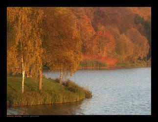 Autumn Shades... by yonashek