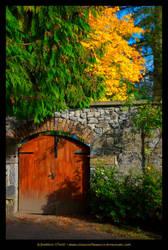 Autumn In Belvedere, Ireland by fluffyvolkswagen
