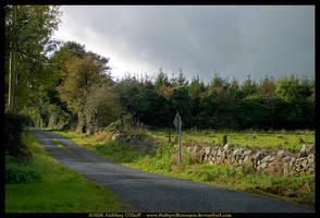 Boreen, Ireland by fluffyvolkswagen