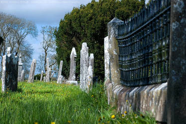 Abbeyshrule Graveyard, Longford, Ireland by fluffyvolkswagen