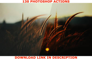 Nature Photoshop Actions - DISCOUNT! by baturaN