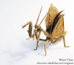 Flying Mantis Origami by chosetec