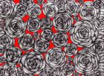 Rose Garden by lunacatd
