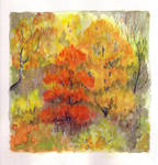 Atumn Colours by lunacatd