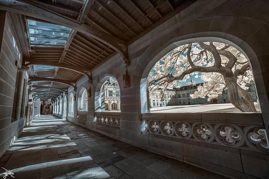 University of Sydney Quadrangle - Infrared by SteveCampbell