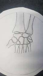 wrist  by fridolf49