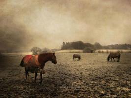 yearning... by AlicjaRodzik