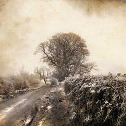 somewhere... by AlicjaRodzik