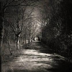shadowlands by AlicjaRodzik