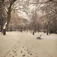 winter tale III by AlicjaRodzik