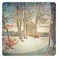 my shout is snowbound by AlicjaRodzik