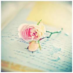 roses and tears by AlicjaRodzik
