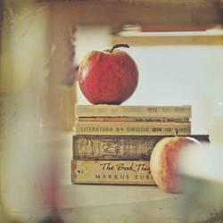 The Book Thief by AlicjaRodzik