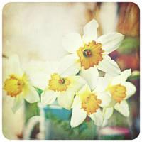 yellow Saturday by AlicjaRodzik