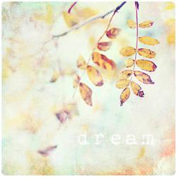Everybody Dreams by AlicjaRodzik