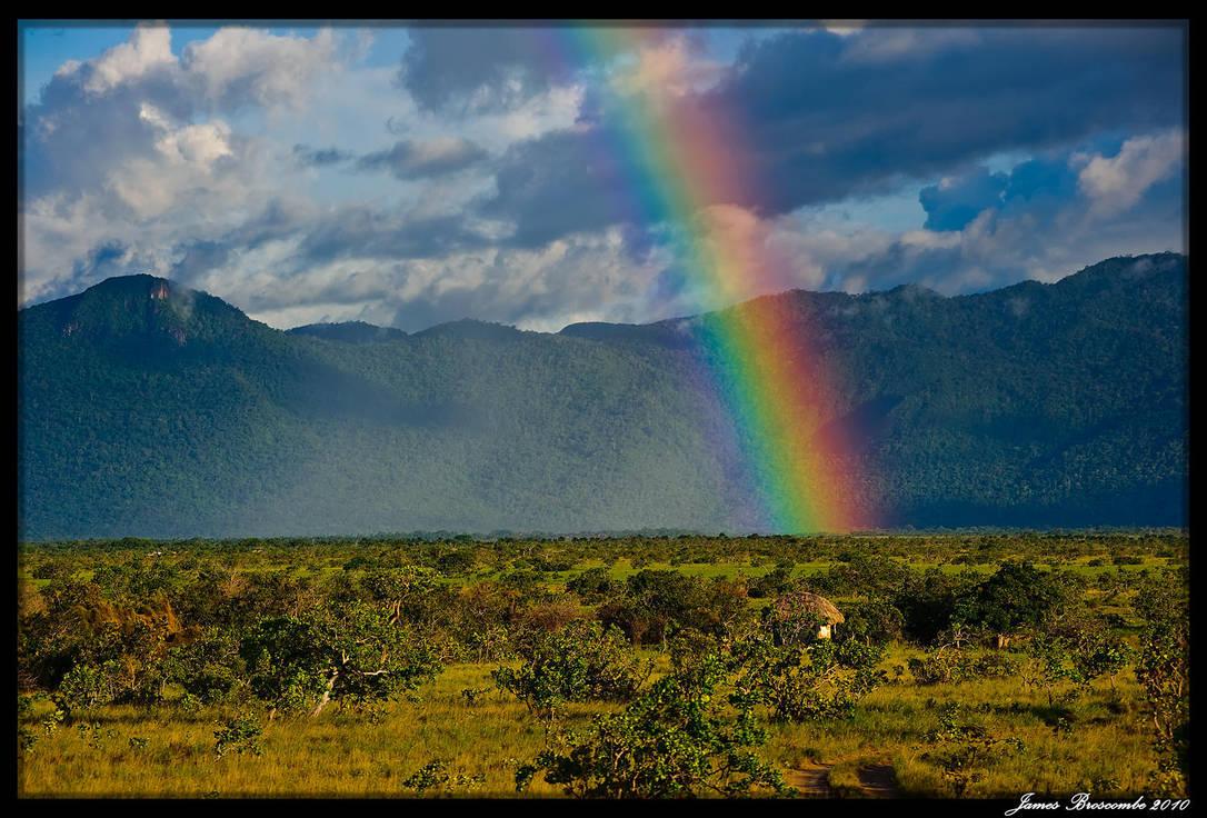 Guyana 2010 - Day 347 by jmbroscombe
