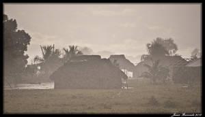 Guyana 2010 - Day 363 by jmbroscombe