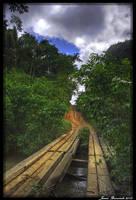 Guyana 2010 - Day 436 by jmbroscombe