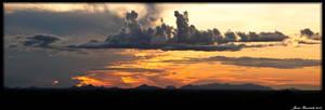 Guyana 2010 - Day 437 by jmbroscombe