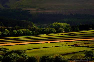Holme Valley fields by jmbroscombe