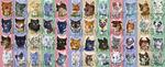 Warrior Cats Sticker Set [2017-2018] by MissyDakota