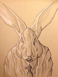 Rabbit Sketch by Tiefenbacher