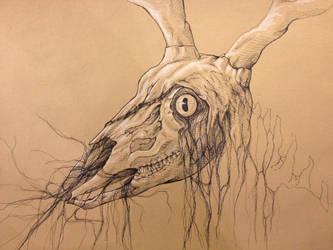Deer Skull Concept by Tiefenbacher
