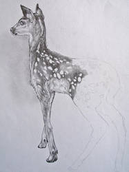 Deer oh deer by Jawbone-Ashtray