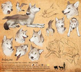 Reference Sheet: Pidgin by KlakKlak