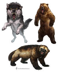 Wild Animal Battlers by KlakKlak