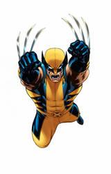Wolverine Marvel Universe line by EdMcGuinness