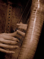 Harp by Sarphea