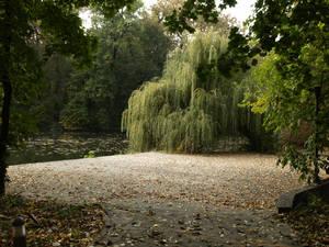 Autumn set 01 by dreamlikestock