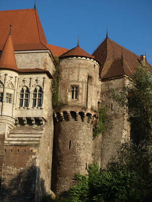 gothic castle detaile by dreamlikestock