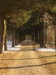 winter path 03 by dreamlikestock
