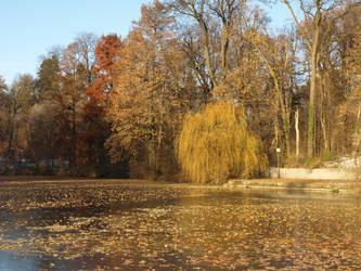 winter pond 03 by dreamlikestock
