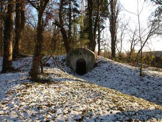 winter woods entrance by dreamlikestock