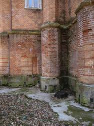 brick wall 3 by dreamlikestock