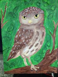Owl by Allybee123