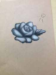 Conte Rose by Allybee123