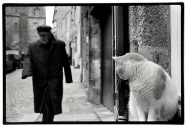 man and cat by rain1man