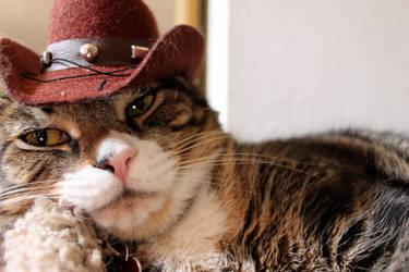 Howdy by edwardvb