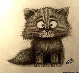Kitten by kdonline