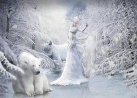 Winter by doclicio
