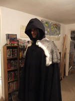 Modified Cloak 2 by VickitoriaEmbroidery