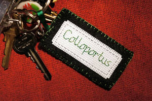 Colloportus 1 by VickitoriaEmbroidery