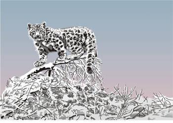 Snow leopard in snow field by Stencilkingdom