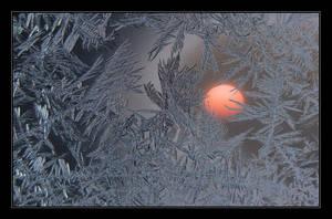 Happy New Year 2008 by Hartmut-Lerch