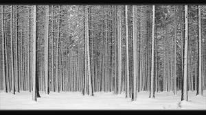 Snow 2005 by Hartmut-Lerch