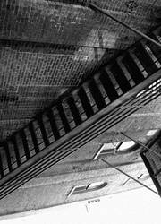 Vine Stairs by Deathtoll